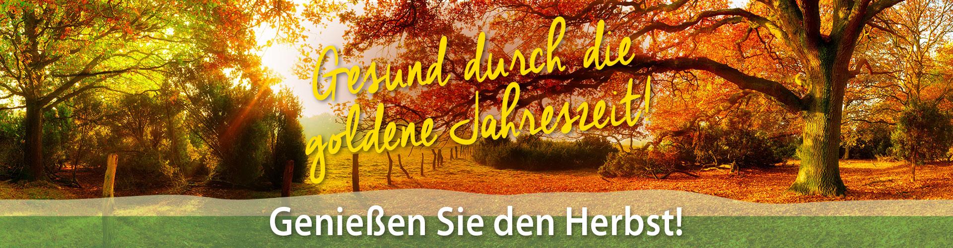 Banner der Apotheke Neckarburg